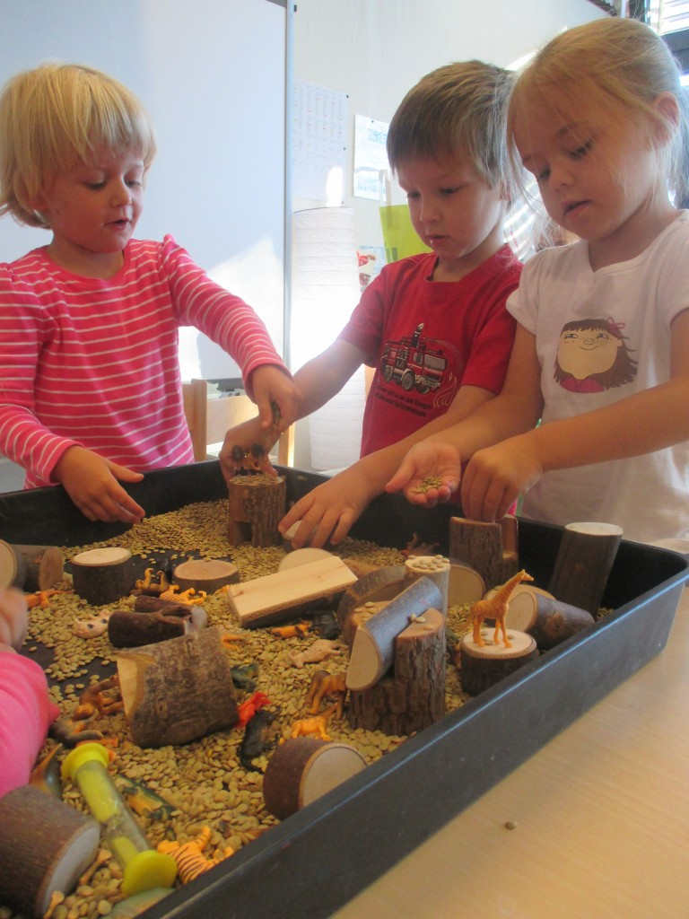 Using natural materials and small world animals to promote collaborative play